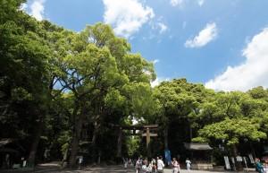 「株主優待券調査」東急不動産ホールディングス【3289】