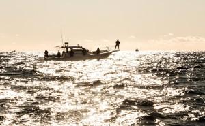 株式投資格言「漁師は潮を見る」